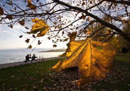 Balaton im Herbst2